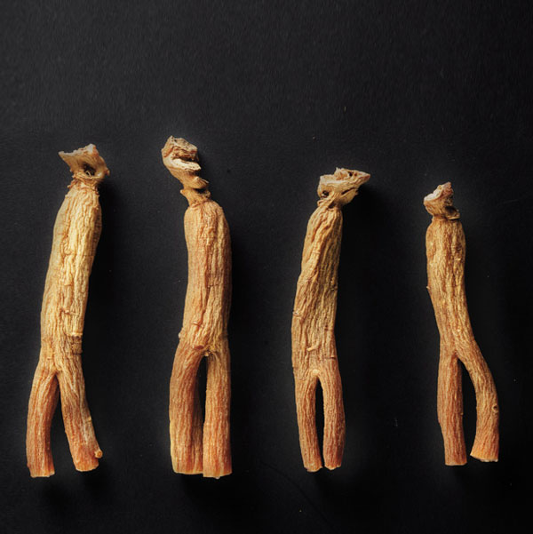 Sâm nhung linh chi đông trùng hạ thảo